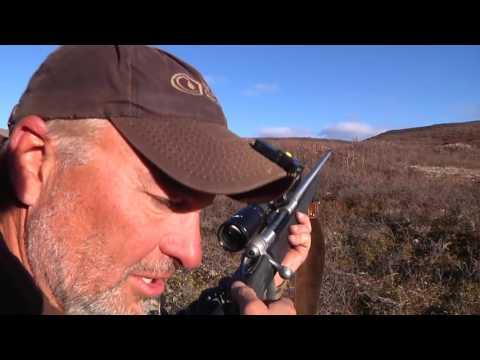 Alaska Moose Hunt   Daily Double