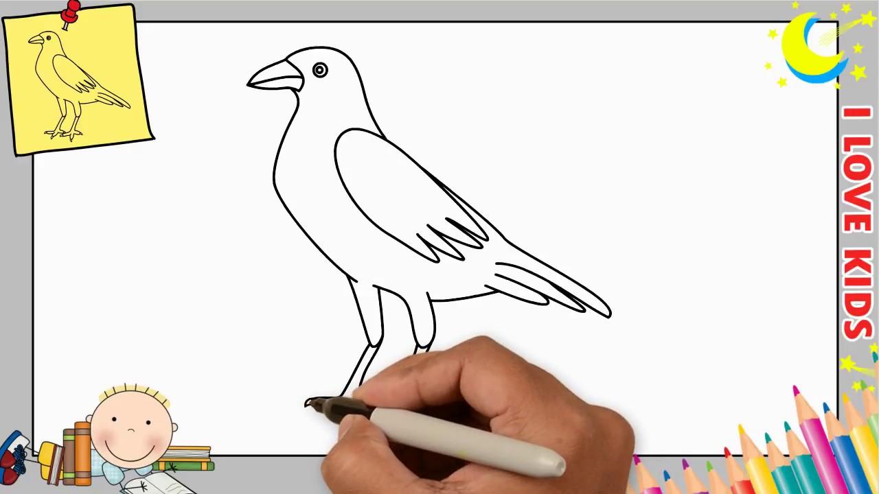 Vogel Zeichnen Lernen Einfach Schritt Für Schritt Für Anfänger
