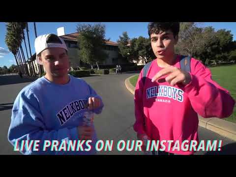 Download Nelk Is In Jail Message From The Filmer MP3, MKV