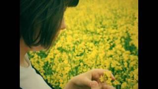 Primaverando - Tonino Carotone
