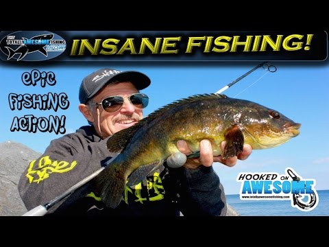 Insane Fishing!! Rod bending action | TAFishing