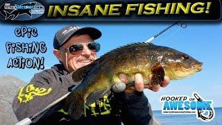 Insane Fishing!! Rod bending action | TAFishing