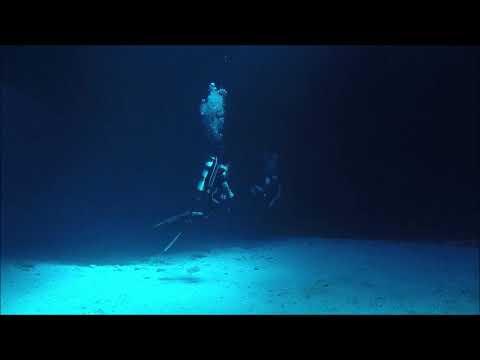 Diving with Jose Tonga 2017