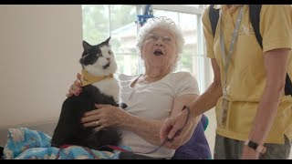 Hand in Paw Nursing Home Visits ft. Phantom the Therapy Cat
