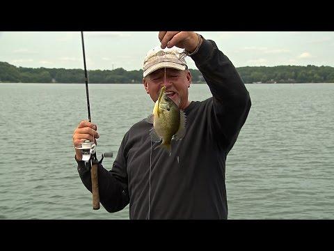 Suspended Summer Bluegill Fishing