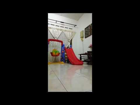 Viral gelagat kucing main gelongsor berkali-kali dia cuba