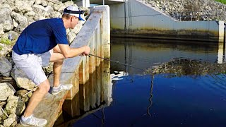 Fishing Spillway Gates for Big Bass (Neko Rig)