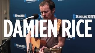 "Damien Rice ""The Blower"