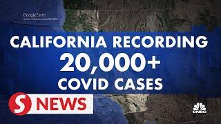 California records over 20,000 new Covid-19 cases on Nov 23
