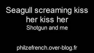 Seagull screaming kiss her kiss her - Shotgun and me