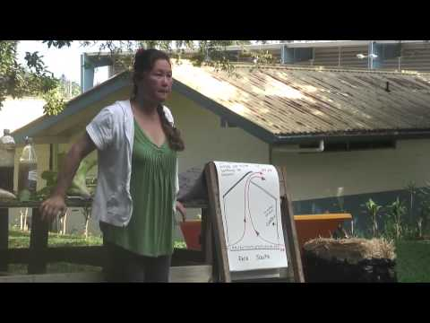Raising backyard chickens - Natural farming workshop - Make you own chicken feed and other tips