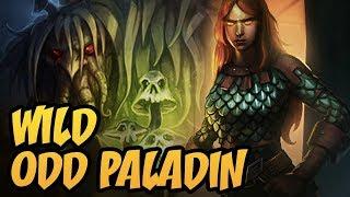 Wild Odd Paladin | Rise of Shadows | Hearthstone