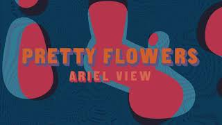 Ariel View - Pretty Flowers (Full Album Stream)