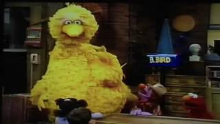 My Sesame Street Home Video Play Along Games & Songs Part 1