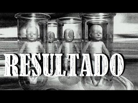 Creando un Homunculo - RESULTADO DE 40 DÍAS DE ESPERA  - Homunculus Result 40 Days Later