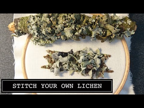 How to Make a Lichen Covered Branch Hand Embroidery Online Class