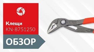 Обзор клещей сантехнических KNIPEX KN-8751250