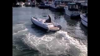 super yacht tender 6.0m jet tender
