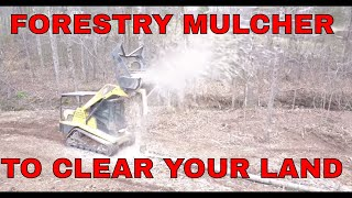 HOW MUCH DOES IT COST TO HIRE A FORESTRY MULCHER FOR CLEARING LAND..WITH GREAT FOOTAGE!