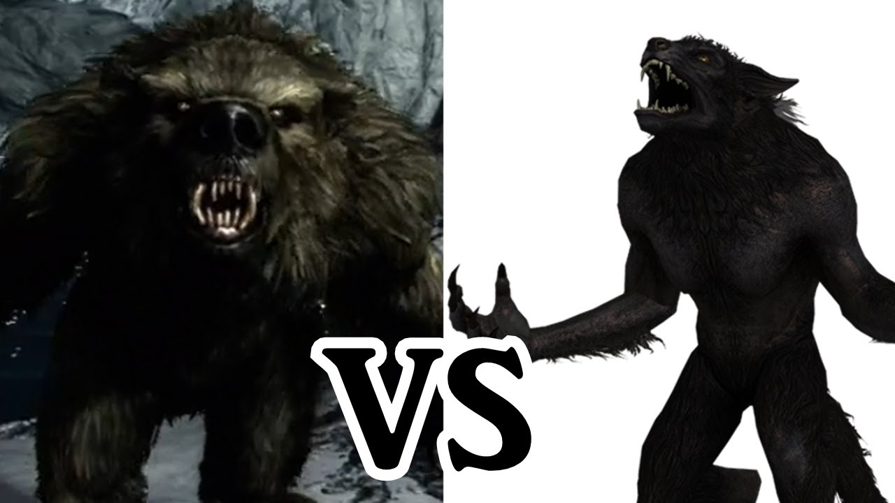 Fun With Skyrim 4 20 Werebears vs 20 Werewolves - YouTube