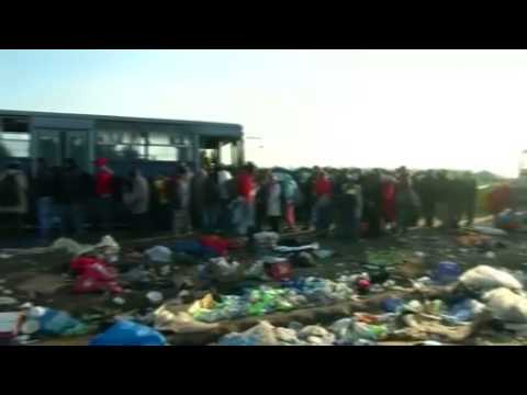 Migrants await buses at Hungarian holding center