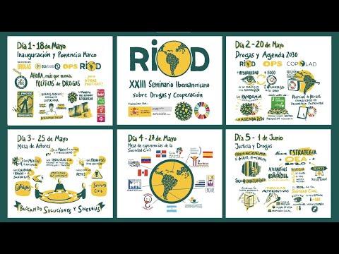 XXIII Seminario RIOD - Resumen de las sesiones en Visual Thinking