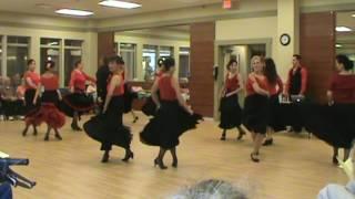 Demidov Dance Performance Team