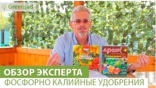 видео Болезни яблонь: описание с названиями и способами лечения