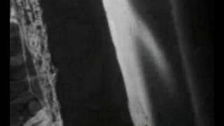 Nautilus Pompilius - Krilja (Wings)