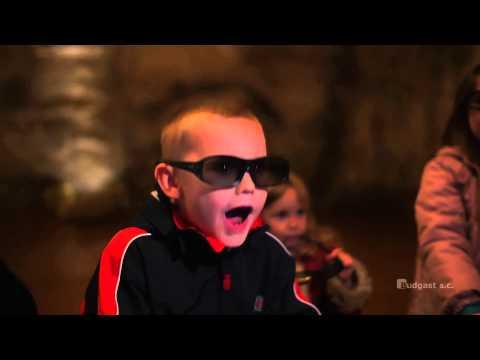 Oceanarium prehistoryczne 3D - film promocyjny