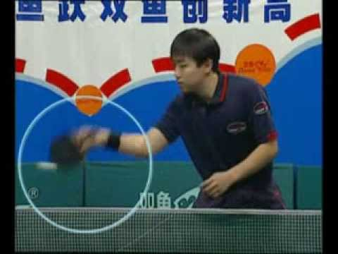 世界乒乓球名將教學片- 01 Excellent World Champions Teach You How To Play Table Tennis