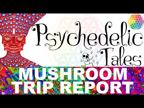 PSYCHEDELIC TALES   Mushroom Trip Report 3 (Alex Grey, Terence Mckenna, Life Advice)   PSILOCYBE