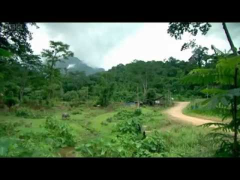 BBC1 Drop Zone S1 Ep5 Northern Thailand - first half filmed in Chiang Dao