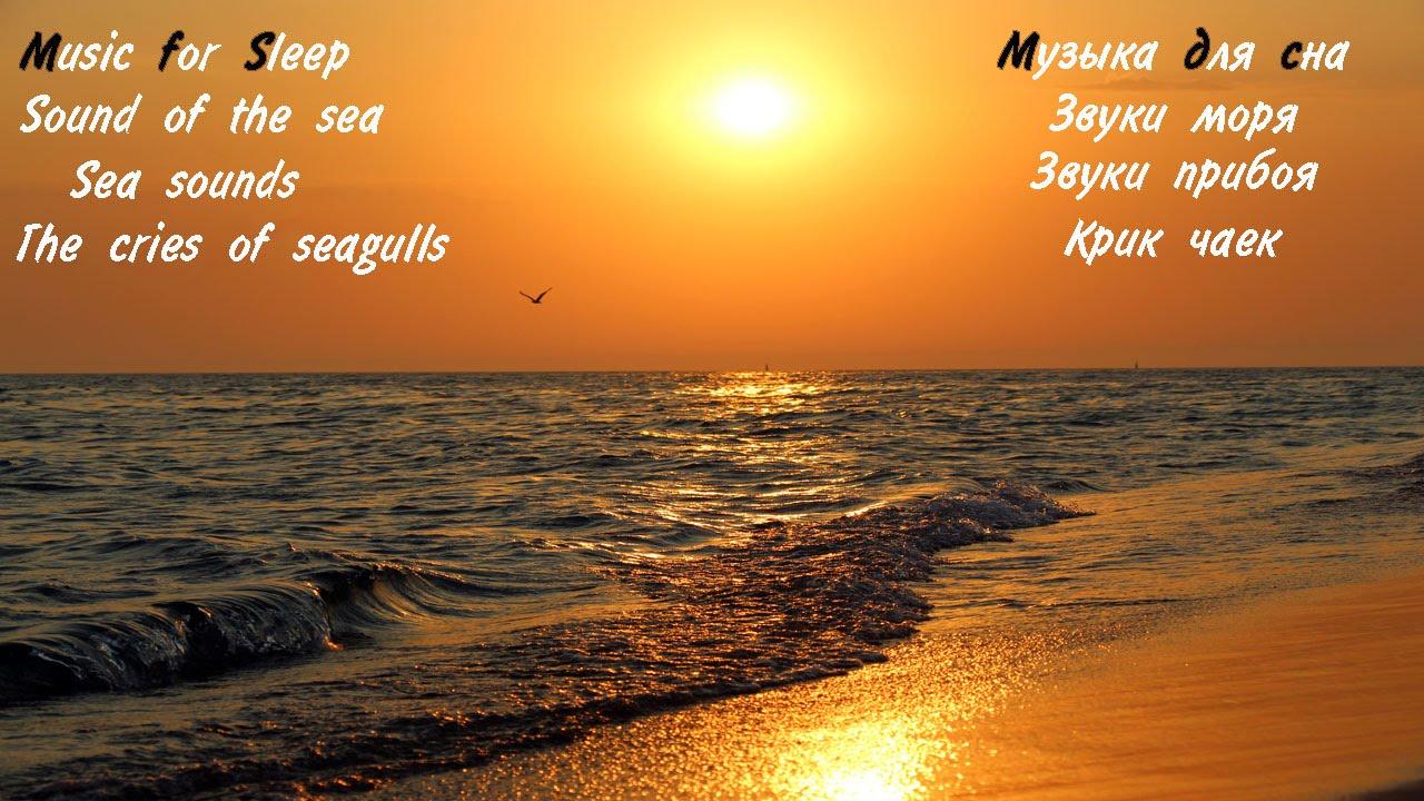 Шум моря звуки природы скачать.