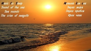 Шум моря крик чаек звуки прибоя звуки моря музыка для сна Sound Of The Sea The Cry Of Gulls