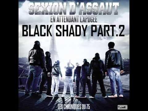 album sexion dassaut lapogée gratuit