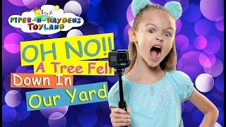 Piper N Hayden | OH NO! A Tree Fell Down In Our Yard