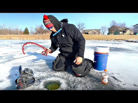 UNEXPECTED GIANT Catch Fishing Neighborhood Pond!! (Ice Fishing)
