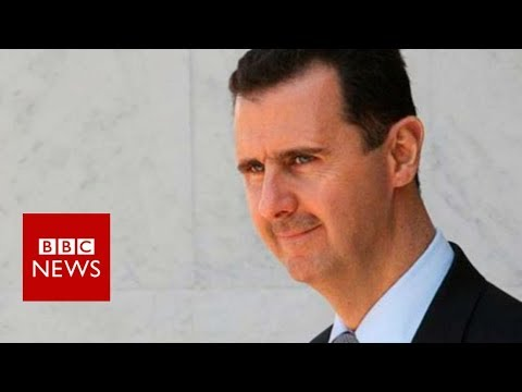 Syria air strikes: Bashar Al-Assad comment - BBC News