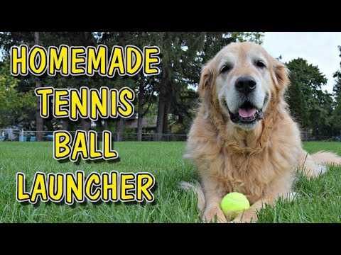 How To Build A Toy Tennis Ball Launcher For Dogs