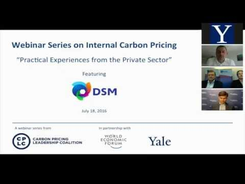 CPLC/WEF/Yale/DSM: Internal Carbon Pricing: Practical experiences from the private sector webinar