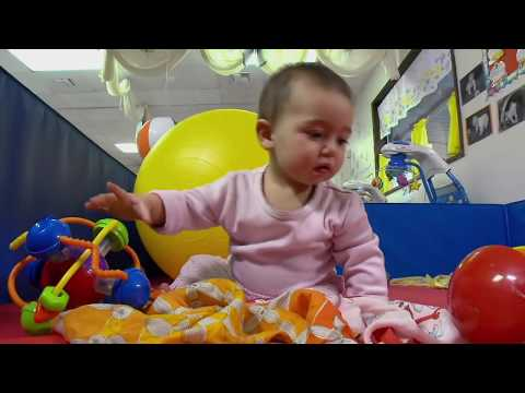 InBrief: Executive Function: Skills for Life and Learning (French subtitles)