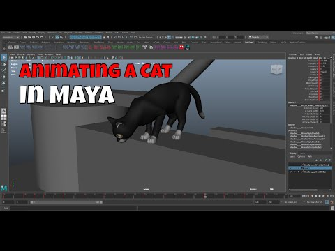 Animating a Cat in Maya | 3D Animation Process Start to Finish | Let's Animate a Cat!