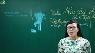 Ngữ Văn Lớp 8 – Bài giảng Hai cây phong ngữ văn lớp 8 của Ai-ma-tôp|Cô Lê Hạnh|Văn học nước ngoài