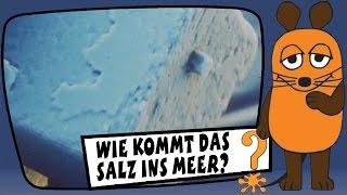 Wie kommt das Salz ins Meer? - Sachgeschichten mit Armin Maiwald