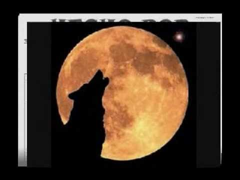 luna llena- baby rasta y gringo