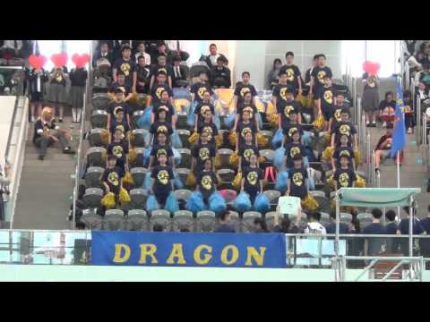 SGSS Swimming Gala Cheering Competition - Dragon House
