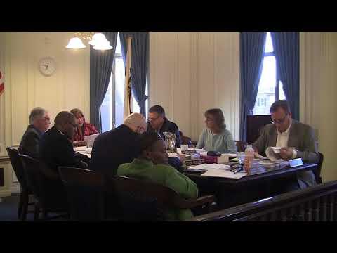 New Brunswick City Council Meeting - 4/17/13