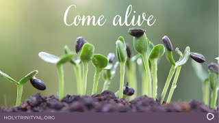 Easter Worship - Come Alive!
