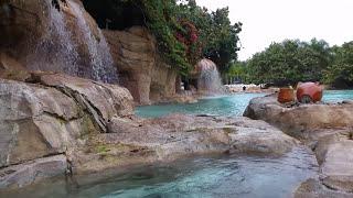 Dicovery Cove in Orlando USA (Tourist Destination)